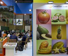 El Gobierno canario promueve el potencial de las empresas hortofrutícolas de las islas en la Fruit Attraction