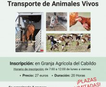 El Cabildo ofrece una formación de bienestar animal para el transporte de animales vivos