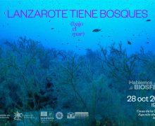 Reserva de la Biosfera organiza la jornada 'Lanzarote tiene bosques (bajo el mar)'